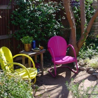 Budget Top Tips for Revamping your Garden