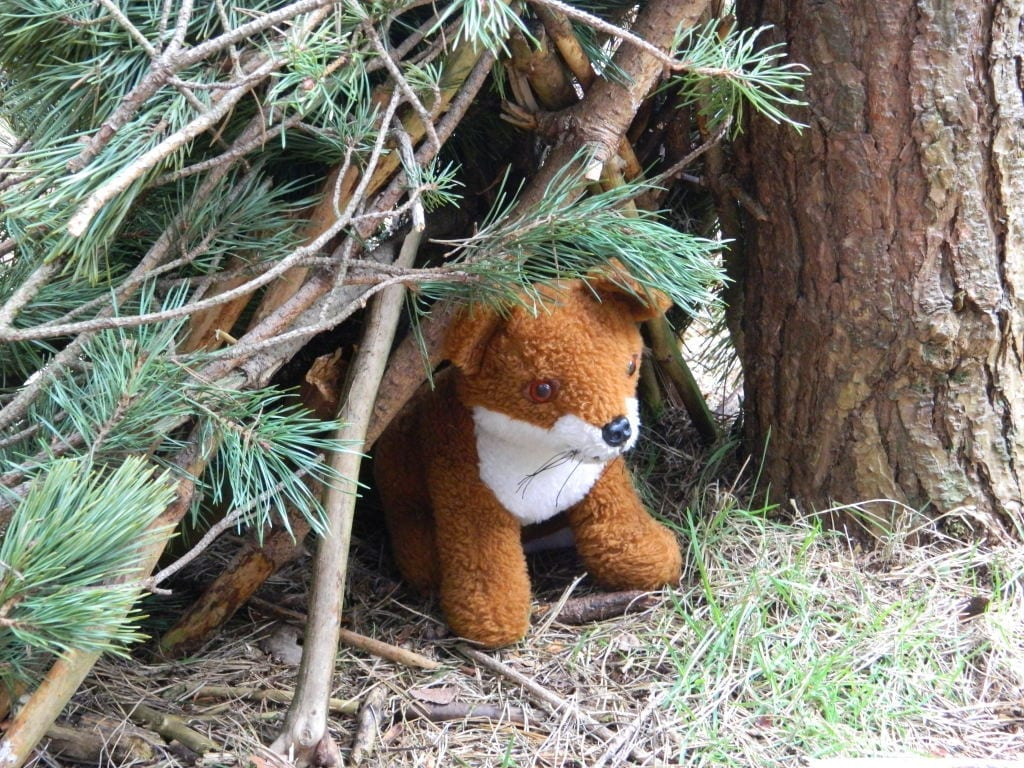 sherwood pines outdoor activities