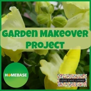 Homebase Garden Makeover Project: The Beginning