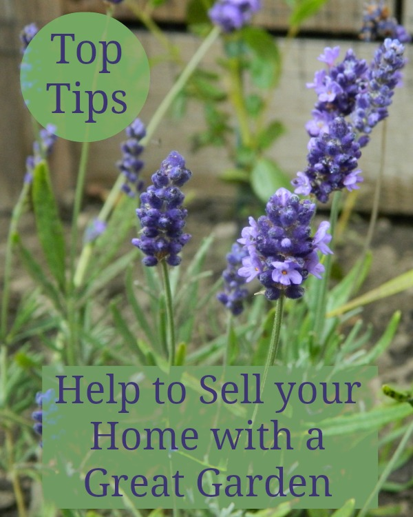how your garden can help sell your home