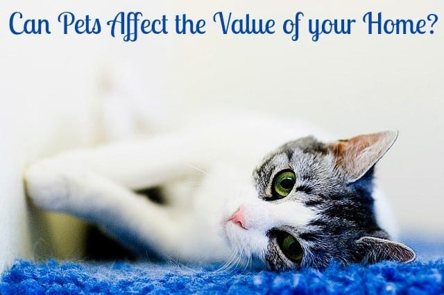 pets affect the value of a home