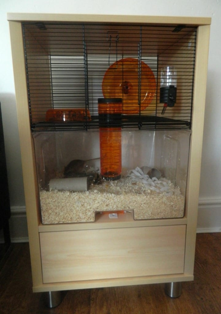 Review Qute Gerbil Cage From Omlet Love Chic Living