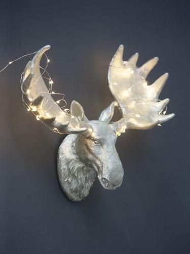 Majestic moose head