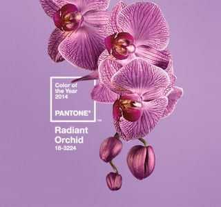 Discover the Colour Trends for 2014