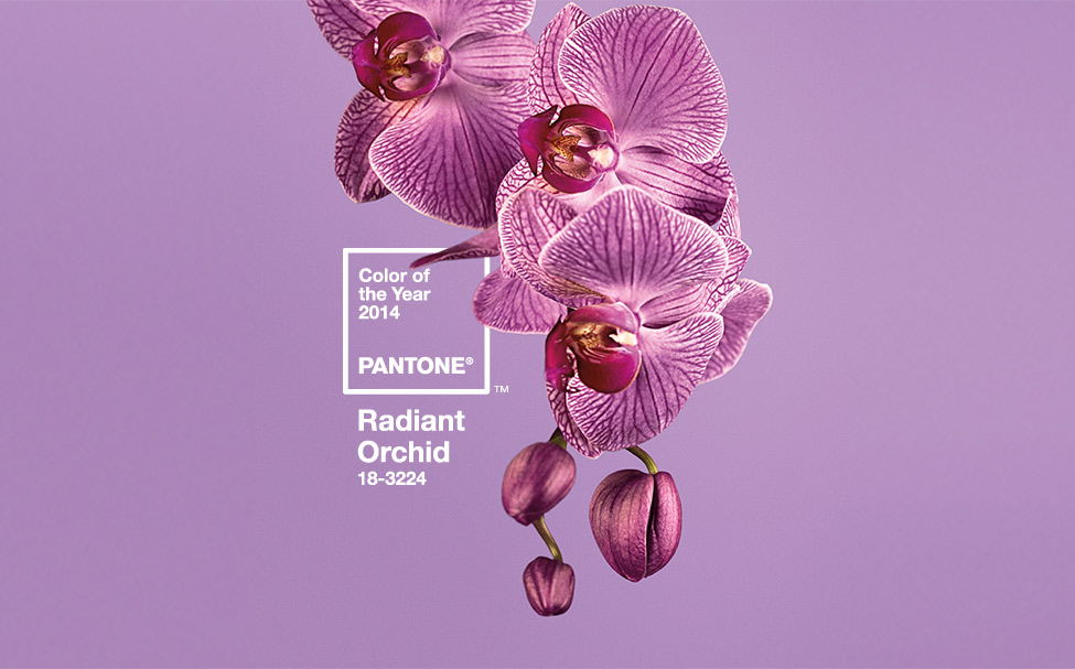 colour trends for 2014
