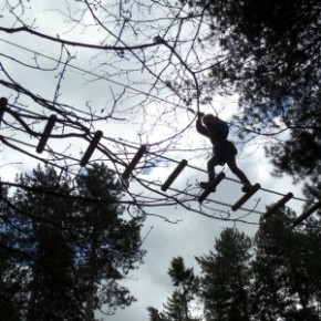 Let your Kids Go Ape at Sherwood Forest