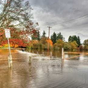 Protect your Home from Flooding - Expert Q&A