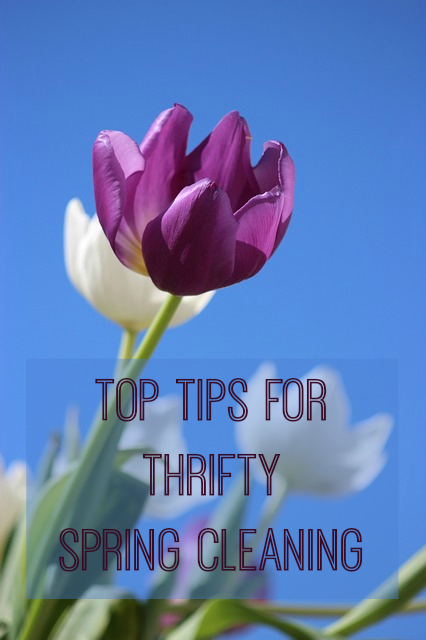 Top Tips for thrifty money saving ideas for your spring cleaning