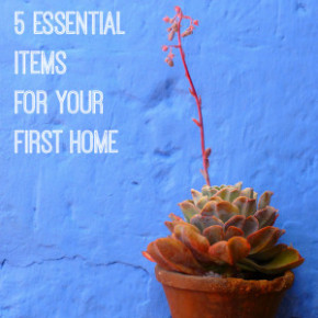 Five Essential Items for your First Home