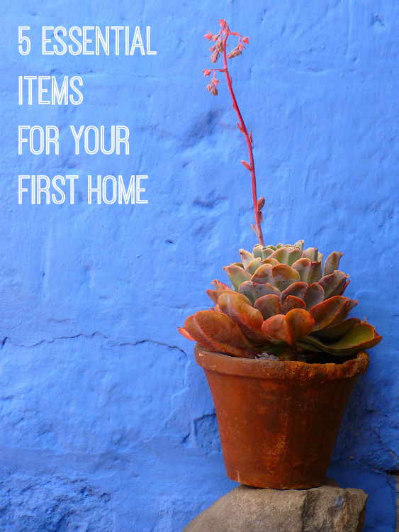 5 Essential items for your first home