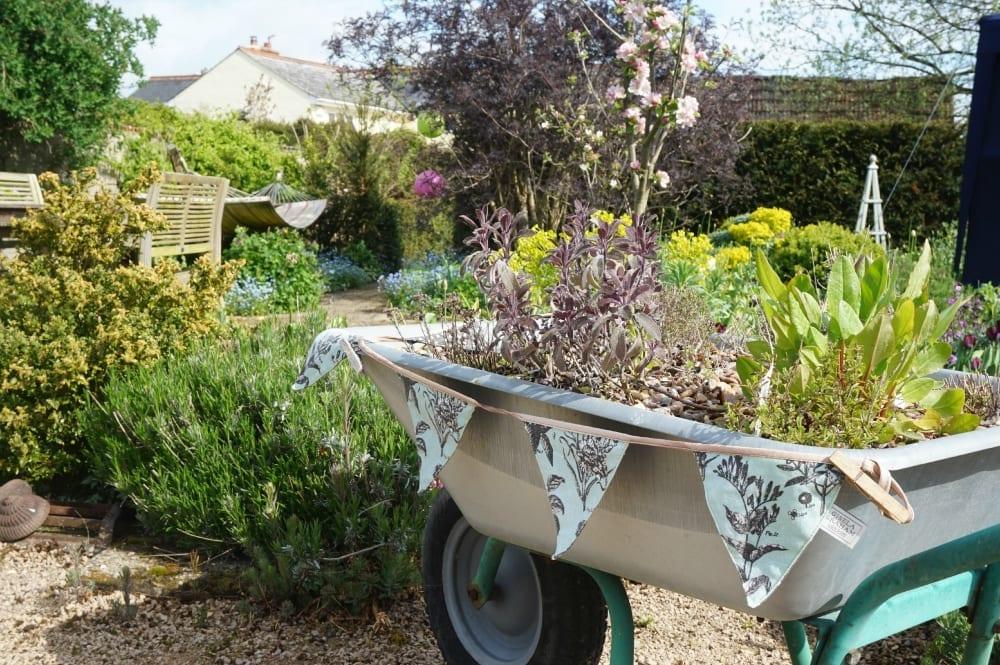 Argos garden party