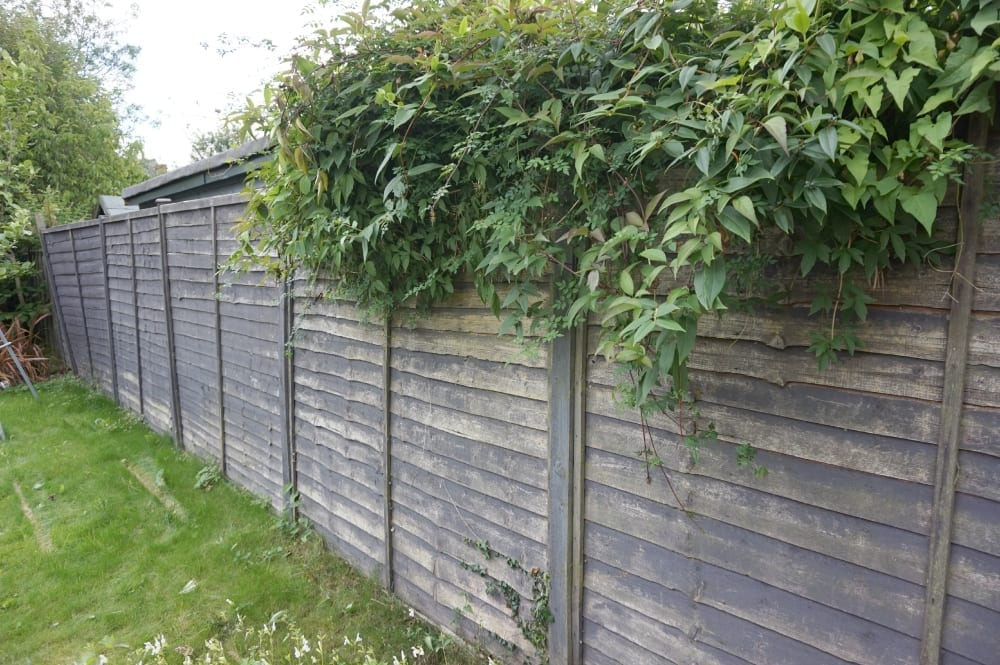 Inspiring Review Cuprinol Brush And Paint Spray System For Fences And Sheds  With Exciting Fence Panels Before With Agreeable Nearest Garden Centre To Me Also Garden Plastic Pots In Addition Caffe Nero Covent Garden And Chiswick House And Garden As Well As Adecco Welwyn Garden City Additionally Bedford Street Covent Garden From Lovechiclivingcouk With   Exciting Review Cuprinol Brush And Paint Spray System For Fences And Sheds  With Agreeable Fence Panels Before And Inspiring Nearest Garden Centre To Me Also Garden Plastic Pots In Addition Caffe Nero Covent Garden From Lovechiclivingcouk