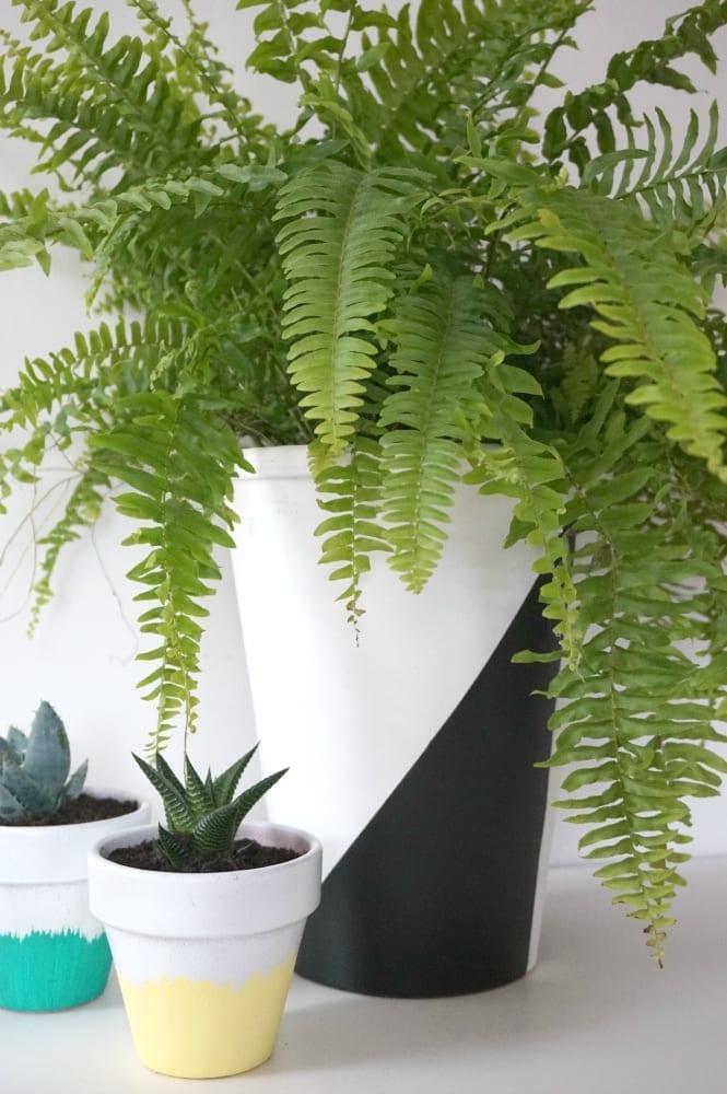 DIY Monochrome planter