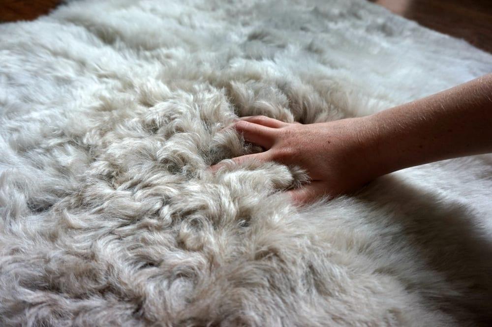 Icelandic sheepskin from Sheep Shop