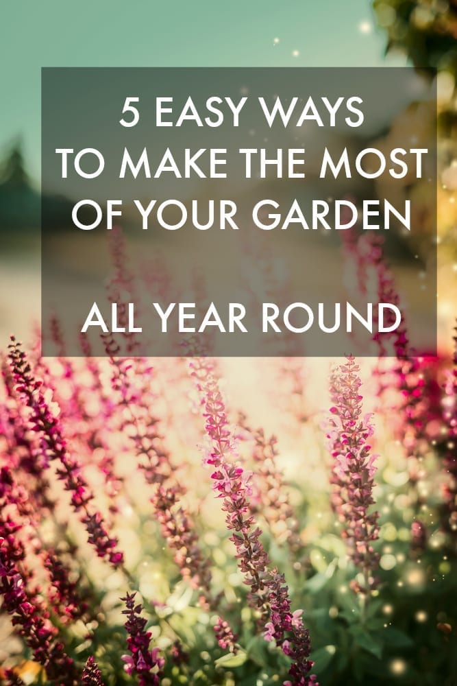 5 easy ways to make the most of your garden all year round