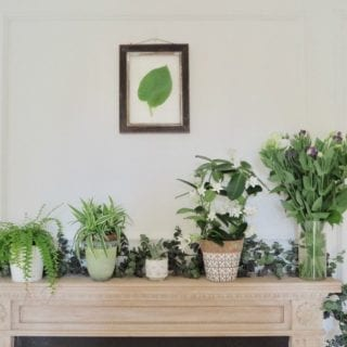 Guest Blogger Series: Three Ways to Style your Mantelpiece