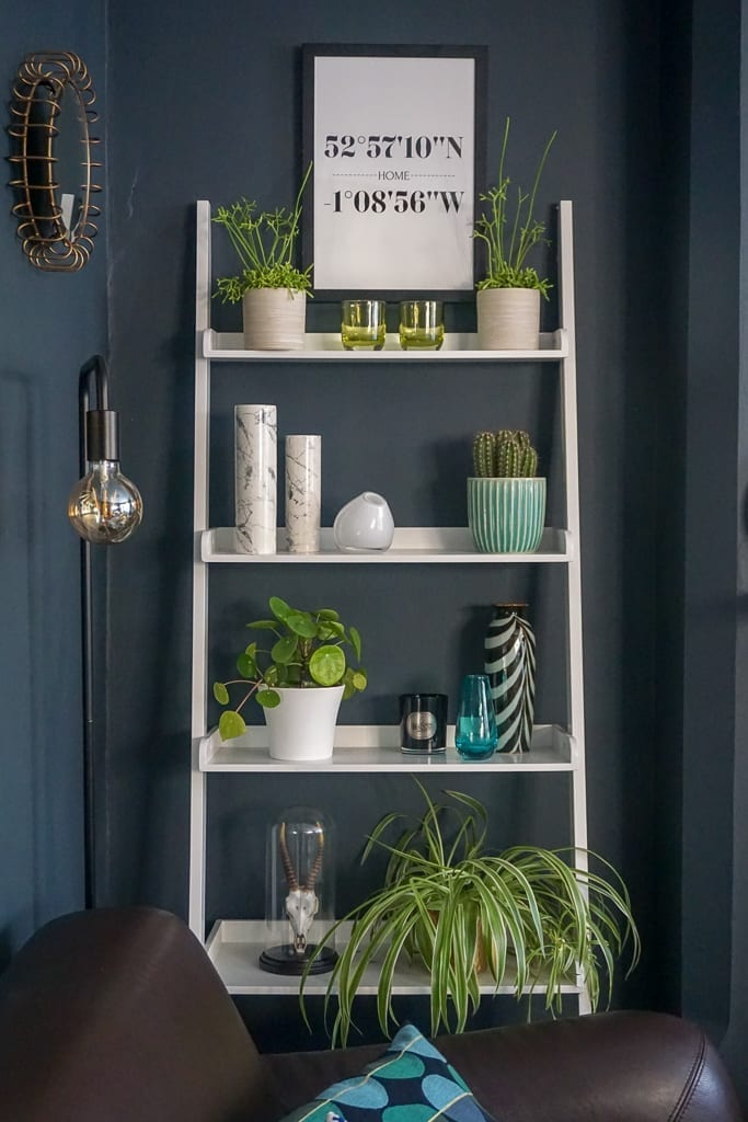 shelf display in a dark living room