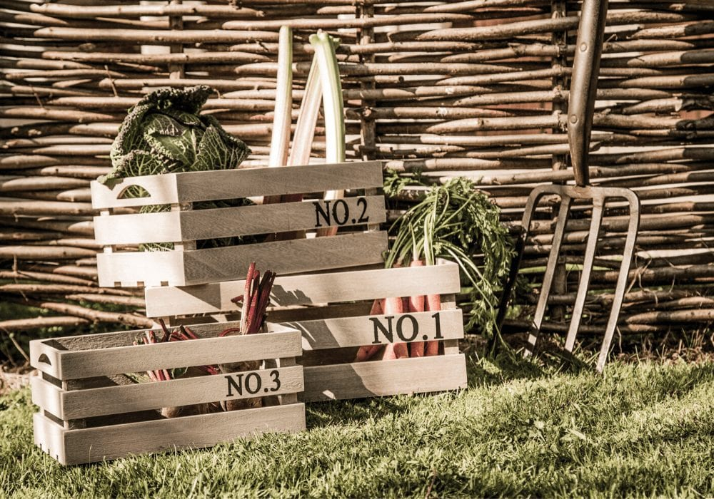 eco friendly wooden crates containing fruit and veg outside on the grass
